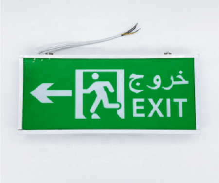Electronic Exit Light